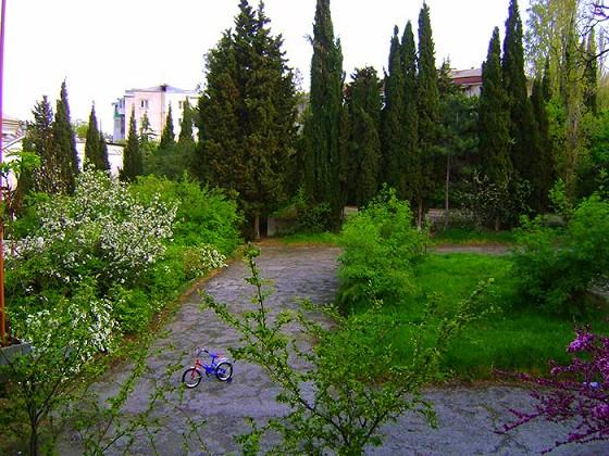 Тихий, зеленый, экологически чистый дворик