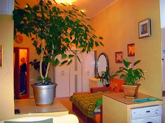 Посмотрите сами на эту квартиру, площадь ее 36 кв. м!!! и это однокомнатной ...